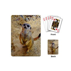 Lovely Meerkat 515p Playing Cards (Mini)