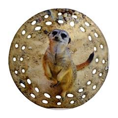 Lovely Meerkat 515p Ornament (Round Filigree)