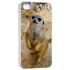 Lovely Meerkat 515p Apple iPhone 4/4s Seamless Case (White)
