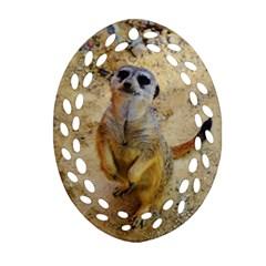 Lovely Meerkat 515p Oval Filigree Ornament (2-Side)