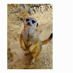 Lovely Meerkat 515p Small Garden Flag (two Sides)