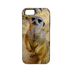 Lovely Meerkat 515p Apple iPhone 5 Classic Hardshell Case (PC+Silicone)