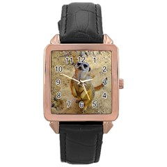 Lovely Meerkat 515p Rose Gold Watches