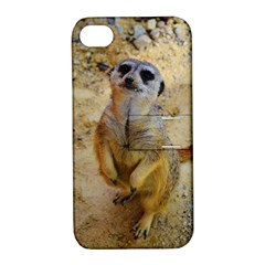 Lovely Meerkat 515p Apple iPhone 4/4S Hardshell Case with Stand