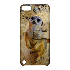 Lovely Meerkat 515p Apple iPod Touch 5 Hardshell Case with Stand