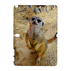 Lovely Meerkat 515p Samsung Galaxy Note 10.1 (P600) Hardshell Case