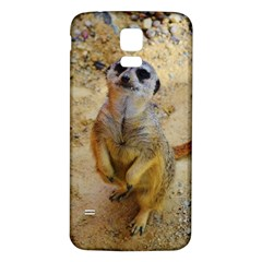 Lovely Meerkat 515p Samsung Galaxy S5 Back Case (White)