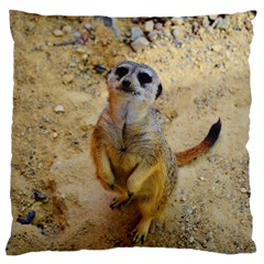 Lovely Meerkat 515p Large Flano Cushion Cases (Two Sides)