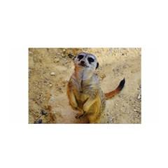 Lovely Meerkat 515p Satin Wrap