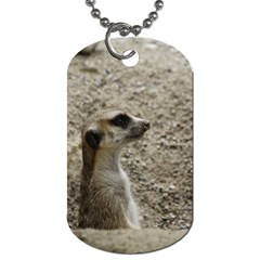 Adorable Meerkat Dog Tag (Two Sides)