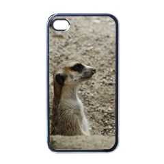 Adorable Meerkat Apple iPhone 4 Case (Black)