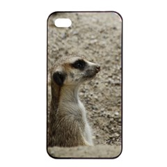 Adorable Meerkat Apple iPhone 4/4s Seamless Case (Black)