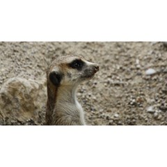 Adorable Meerkat You Are Invited 3d Greeting Card (8x4)