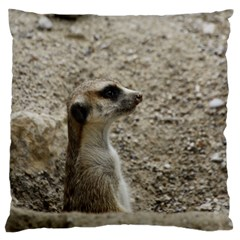 Adorable Meerkat Large Cushion Cases (Two Sides)