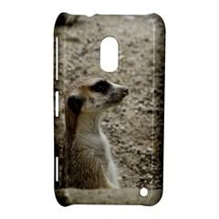 Adorable Meerkat Nokia Lumia 620