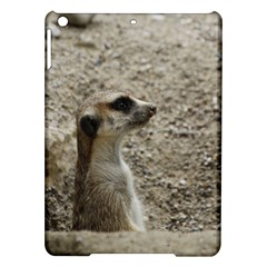 Adorable Meerkat iPad Air Hardshell Cases