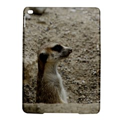 Adorable Meerkat iPad Air 2 Hardshell Cases