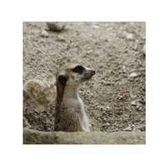 Adorable Meerkat Small Satin Scarf (Square)