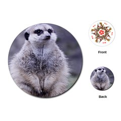 Adorable Meerkat 03 Playing Cards (Round)