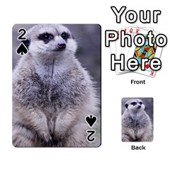 Adorable Meerkat 03 Playing Cards 54 Designs