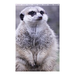 Adorable Meerkat 03 Shower Curtain 48  X 72  (small)