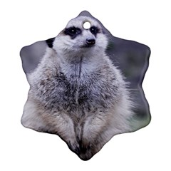 Adorable Meerkat 03 Ornament (snowflake)