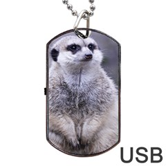Adorable Meerkat 03 Dog Tag USB Flash (Two Sides)