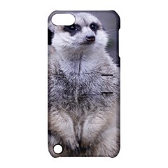 Adorable Meerkat 03 Apple iPod Touch 5 Hardshell Case with Stand