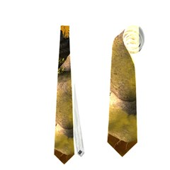 The Forgotten World In The Sky Neckties (two Side)