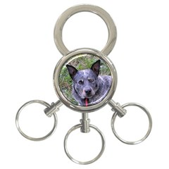 Australian Cattle Dog Blue 3-Ring Key Chains