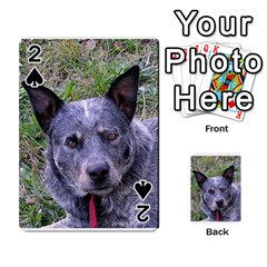 Australian Cattle Dog Blue Playing Cards 54 Designs