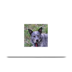 Australian Cattle Dog Blue Plate Mats