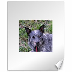 Australian Cattle Dog Blue Canvas 11  x 14