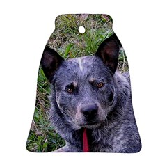 Australian Cattle Dog Blue Bell Ornament (2 Sides)