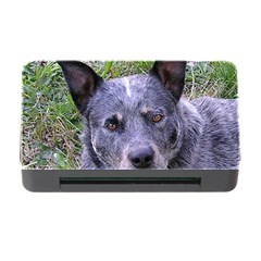 Australian Cattle Dog Blue Memory Card Reader with CF