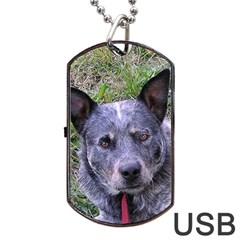 Australian Cattle Dog Blue Dog Tag USB Flash (One Side)