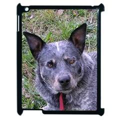 Australian Cattle Dog Blue Apple iPad 2 Case (Black)