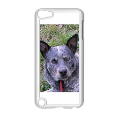 Australian Cattle Dog Blue Apple iPod Touch 5 Case (White)