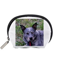 Australian Cattle Dog Blue Accessory Pouches (Small)