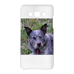 Australian Cattle Dog Blue Samsung Galaxy A5 Hardshell Case