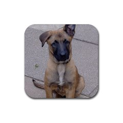 Malinois Puppy Sitting Rubber Coaster (Square)