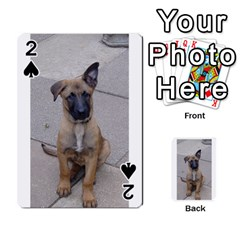 Malinois Puppy Sitting Playing Cards 54 Designs