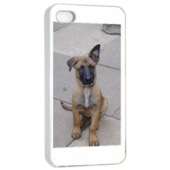 Malinois Puppy Sitting Apple iPhone 4/4s Seamless Case (White)