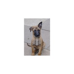 Malinois Puppy Sitting YOU ARE INVITED 3D Greeting Card (8x4)