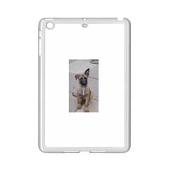 Malinois Puppy Sitting iPad Mini 2 Enamel Coated Cases
