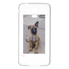 Malinois Puppy Sitting Samsung Galaxy S5 Back Case (White)