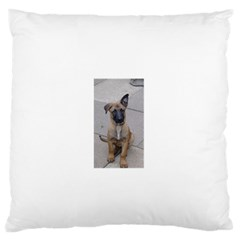Malinois Puppy Sitting Large Flano Cushion Cases (Two Sides)