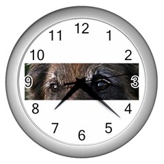 Belgian Tervueren Eyes Wall Clocks (Silver)