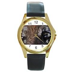 Belgian Tervueren Eyes Round Gold Metal Watches