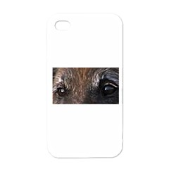 Belgian Tervueren Eyes Apple iPhone 4 Case (White)